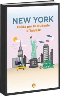 New_York_ITA_guide_ebook_cover.jpg