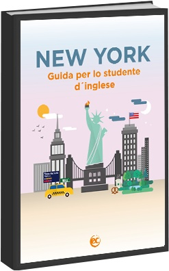 New_York_ITA_guide_ebook_cover.jpg