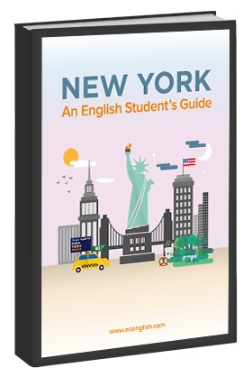New_York_guide_ebook_cover.jpg